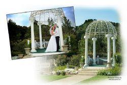 Wedding Ceremony and Reception Dallas / Fort Worth area