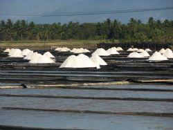 Kosher Sea Salt