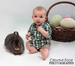 Easter Portraits with baby chicks and Live Bunnies